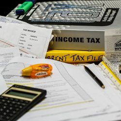 how to file the income tax return and wealth statement